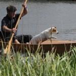 Oxon, PangbourneBeale Park Boat Show 2013